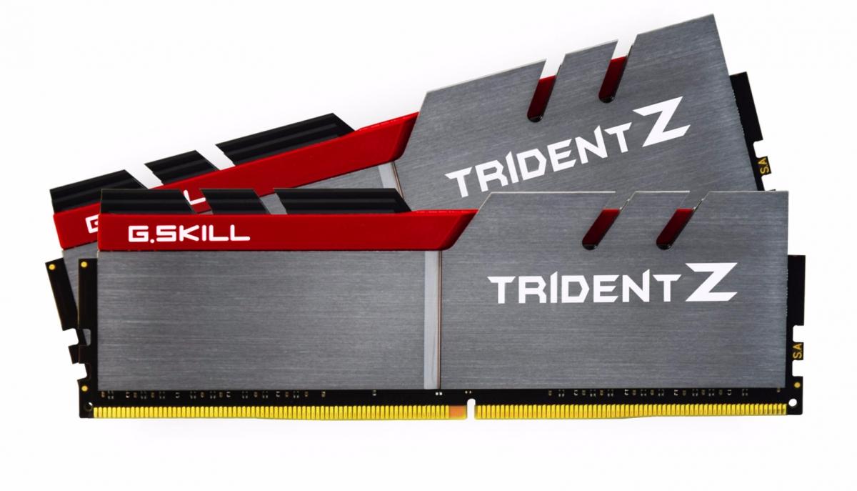 G.Skill 32GB (2 x 16GB) DDR4 3000 MHZ (F4-3000C14D-32GTZ)